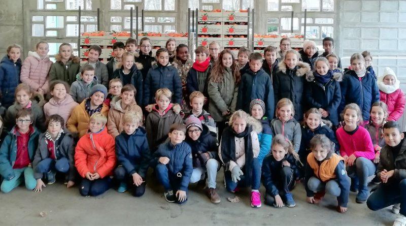 Beau succès de l'opération agrumes : 2 400 kg d'agrumes pour financer les voyages scolaires.